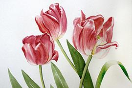 Fleurs de pinceau